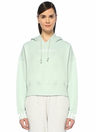 adidas Sweatshirt Yeşil